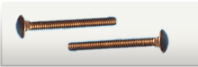 Silicon Bronze Carriage Bolts 1/4-20